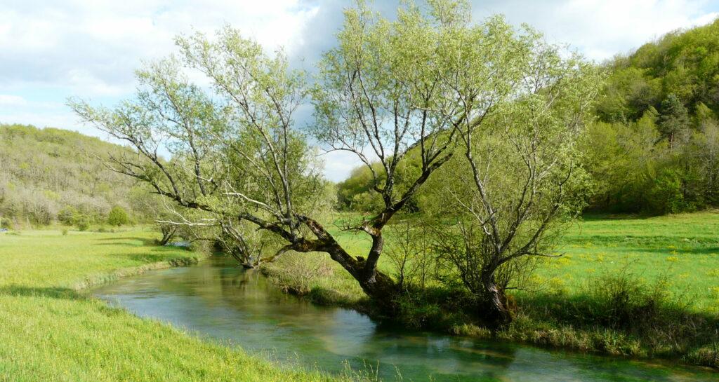 Ruisseau du Doux Coly